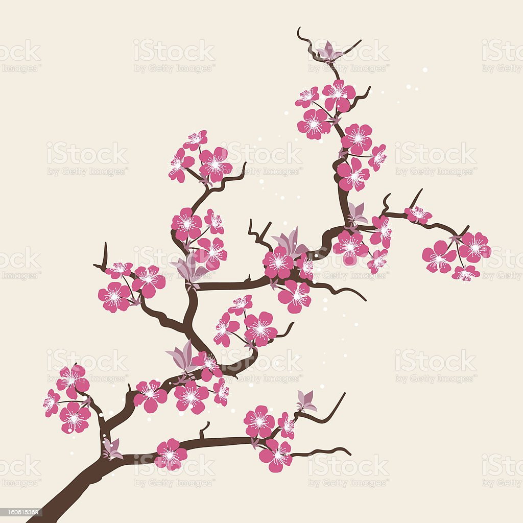 Card with stylized cherry blossom flowers. vector art illustration