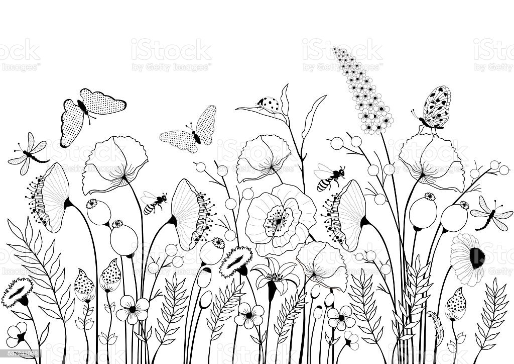 Card with wild flowers and butterflies vector art illustration