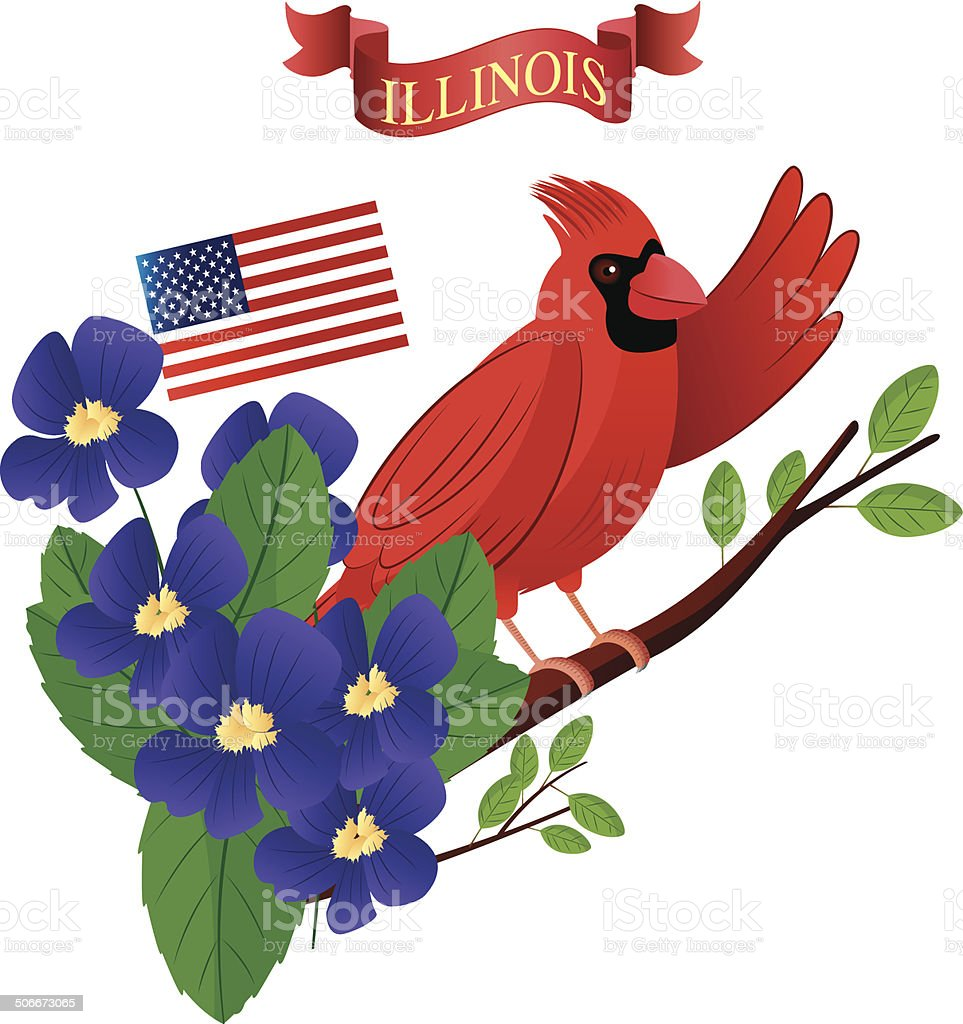 Cardinal Birds and Violet vector art illustration