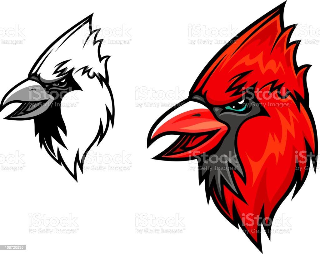 Cardinal birds vector art illustration