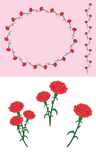 Carnation Clip Art, Vector Images & Illustrations - iStock