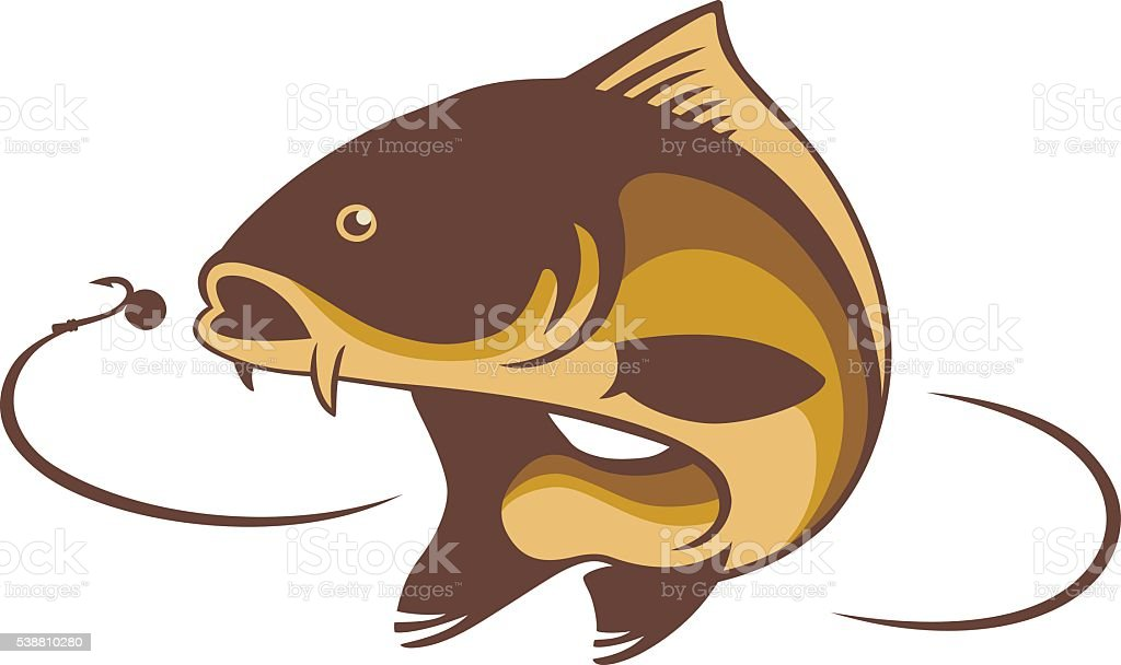 carp fish vector art illustration