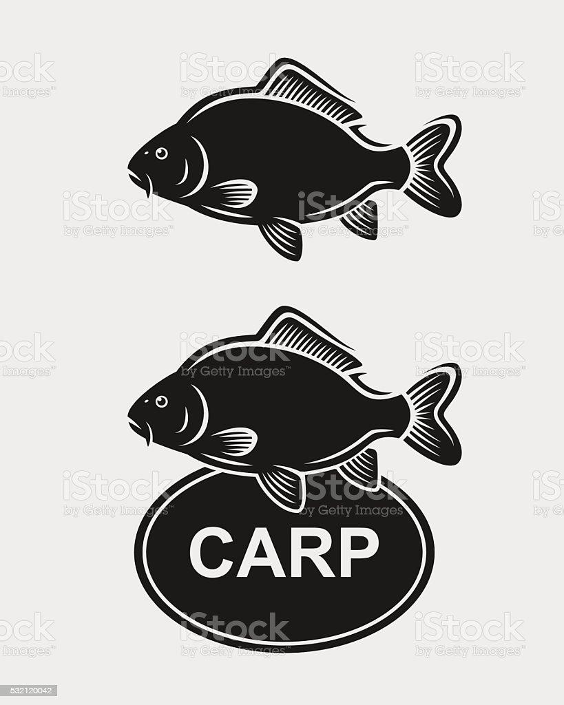 Carp set. Vector vector art illustration