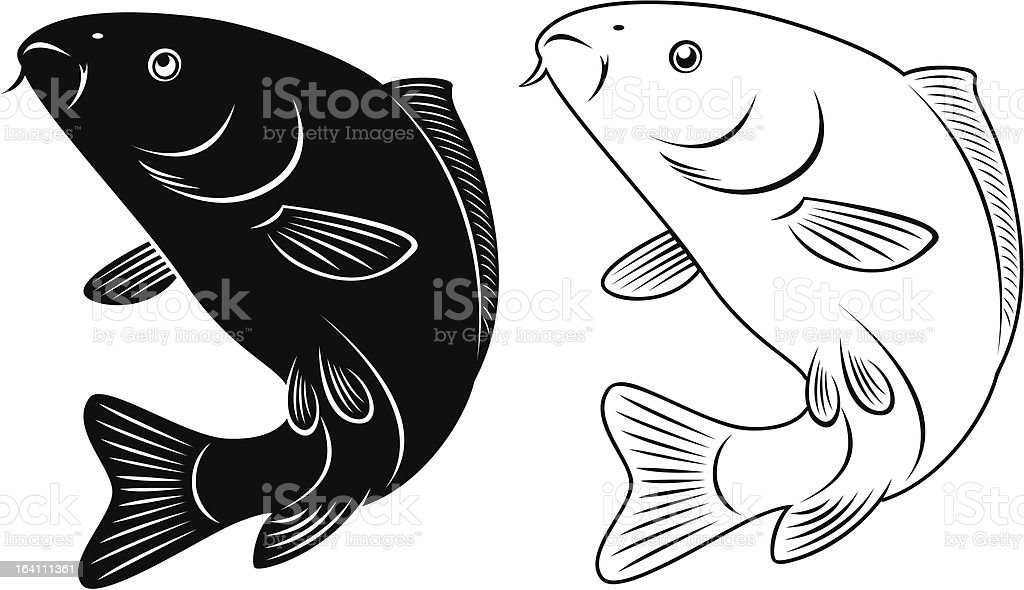 carp royalty-free stock vector art