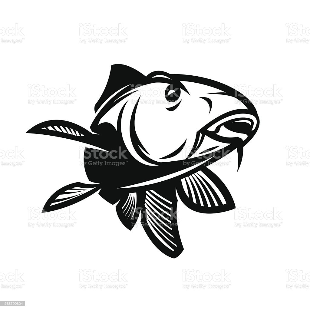 carp vector illustration vector art illustration
