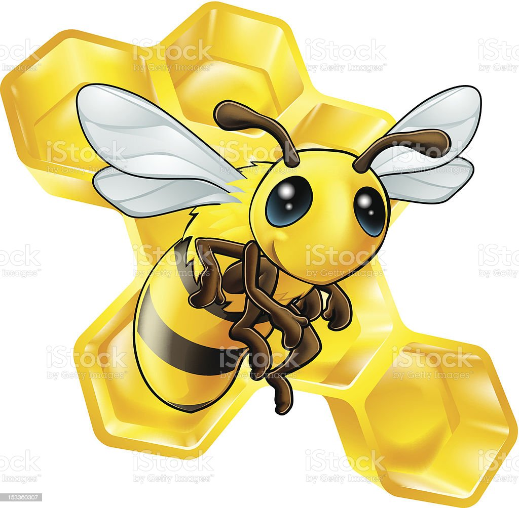Cartoon bee with honeycomb vector art illustration