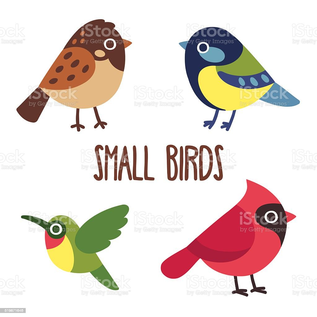 Cartoon birds set vector art illustration