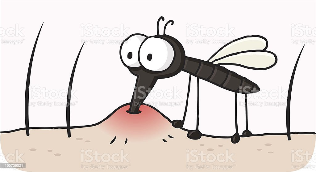 cartoon blood sucking mosquito / gnat bite vector art illustration