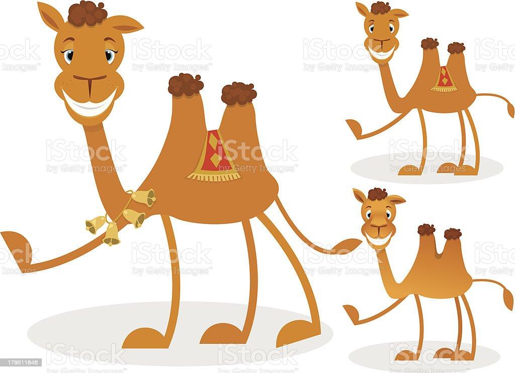Cartoon camel vector art illustration