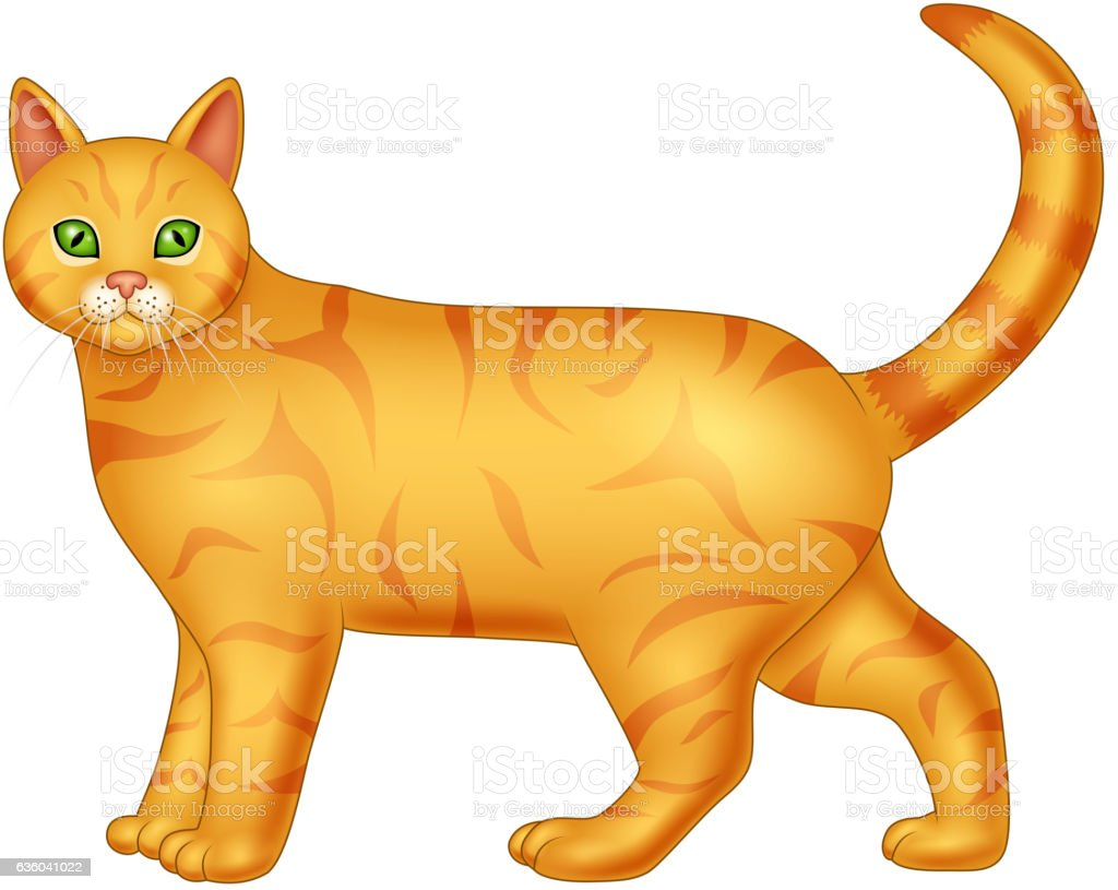 Cartoon cat isolated on white background vector art illustration