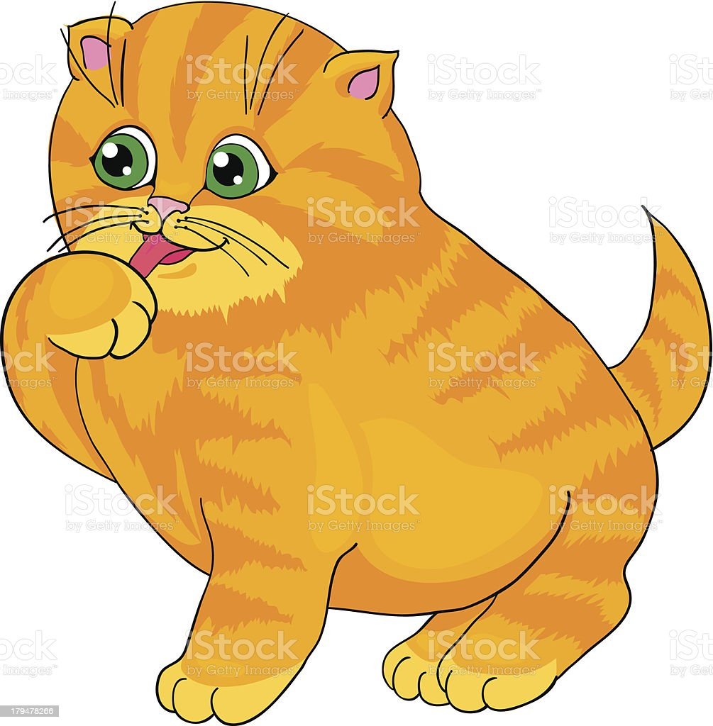 Cartoon cat, with isolation on a white background royalty-free stock vector art