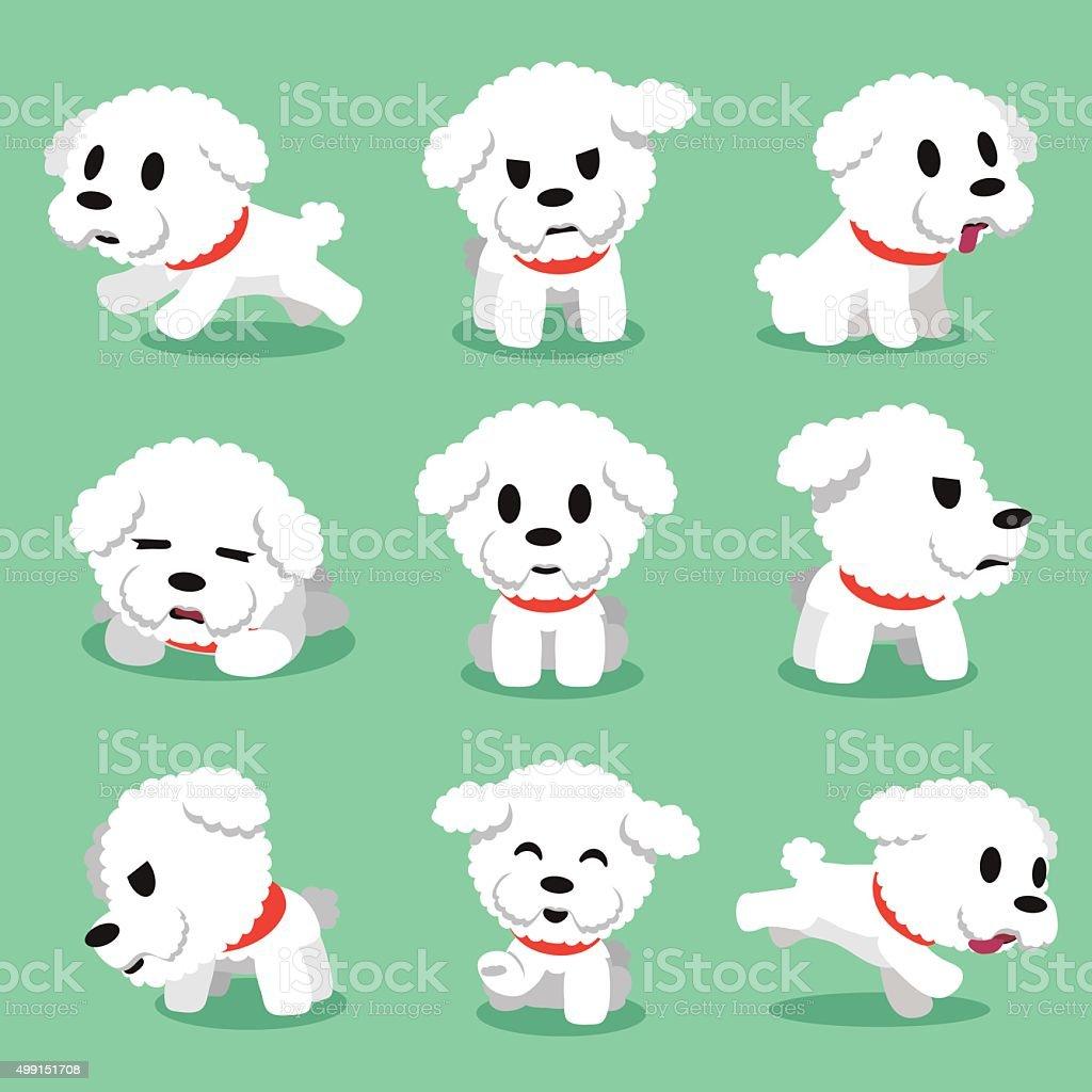 Cartoon character bichon frise dog poses vector art illustration