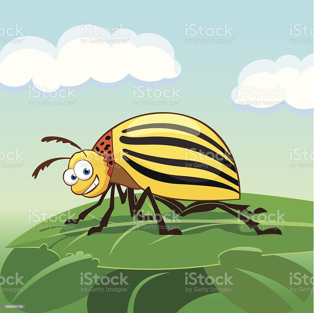 Cartoon colorado potato beetle vector art illustration