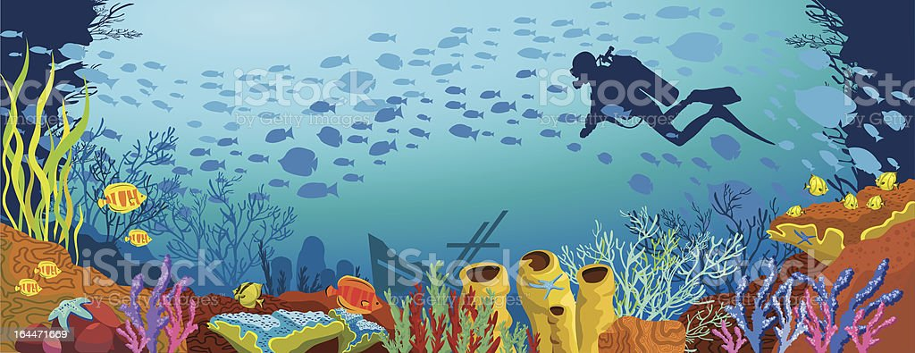 Cartoon colored coral reef and diver vector art illustration