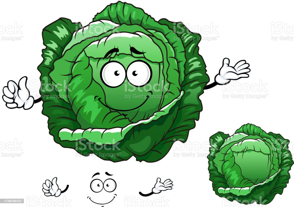Cartoon crunchy cabbage vegetable character vector art illustration
