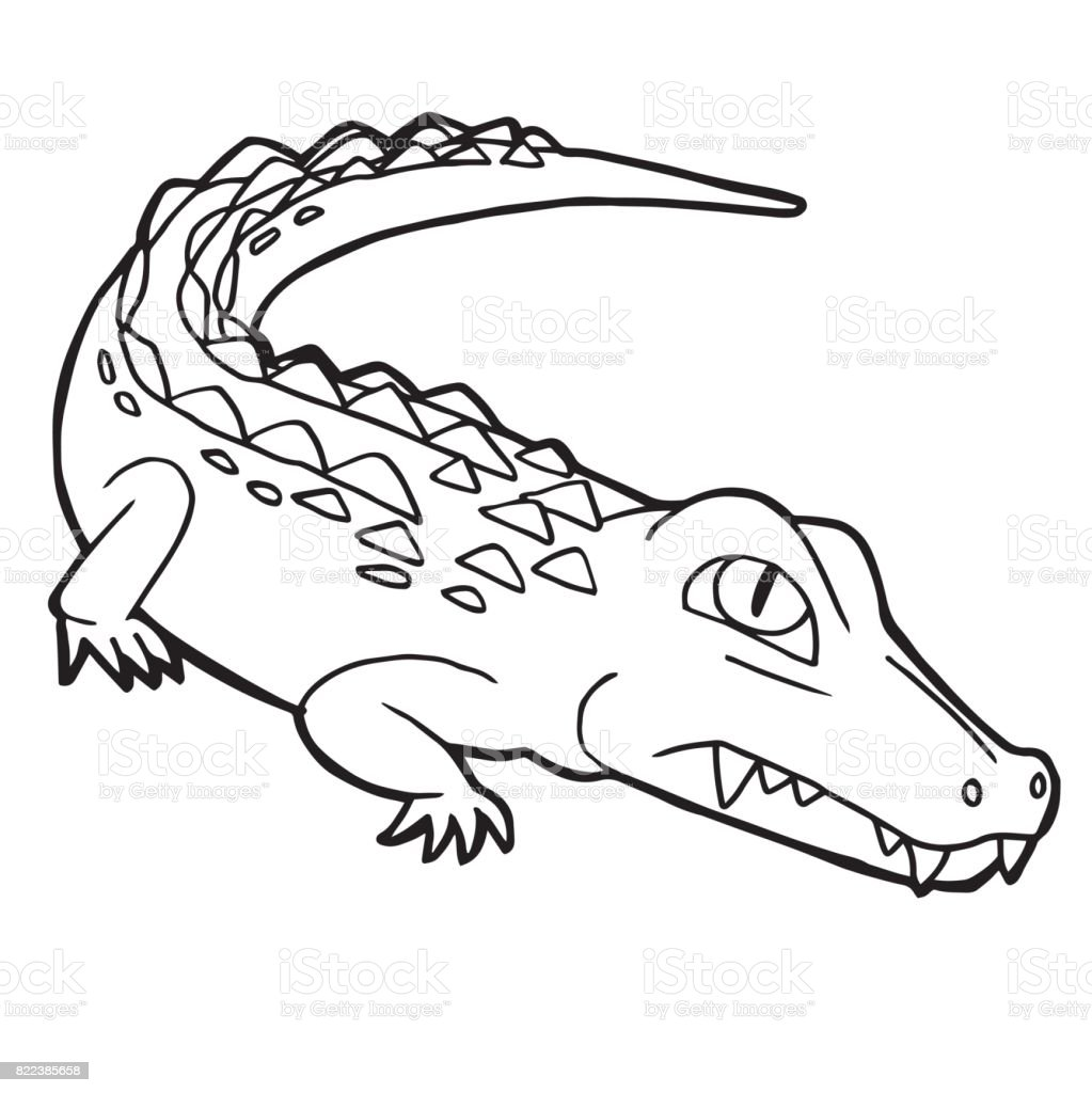 Cartoon Cute Crocodile Coloring Page Vector Illustration stock