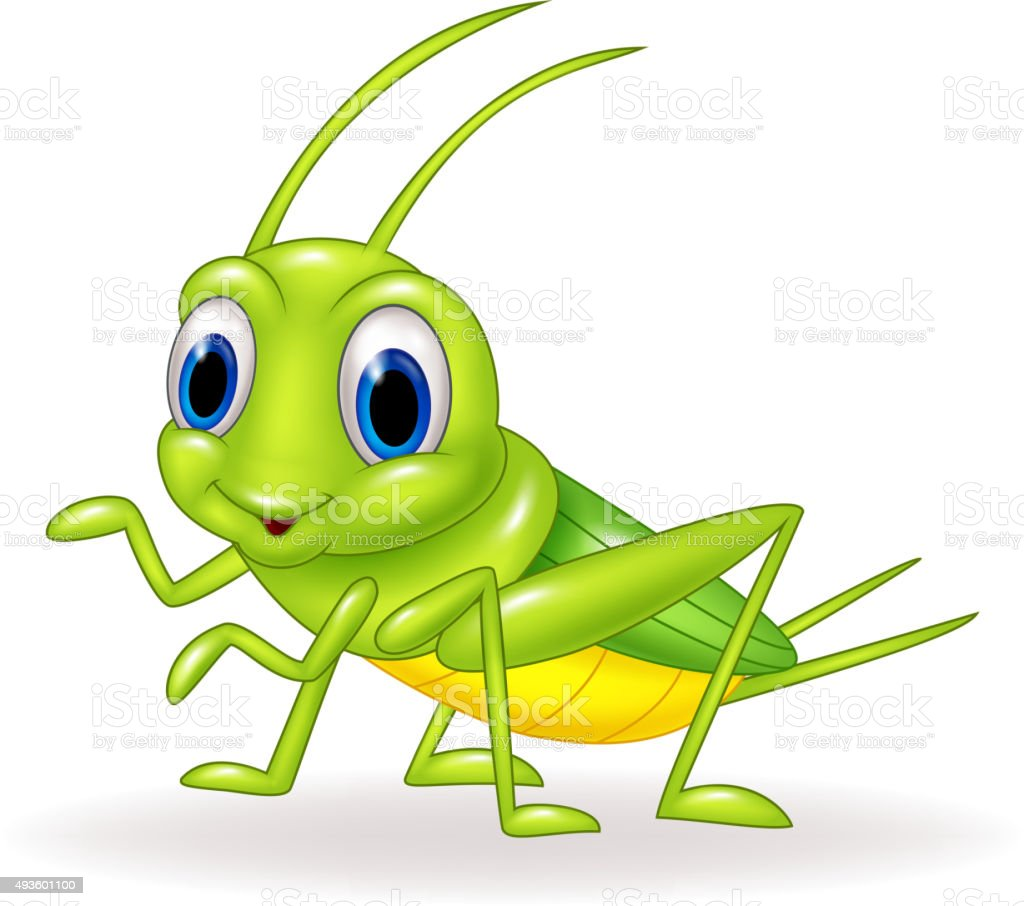 Cartoon cute green cricket isolated on white background vector art illustration