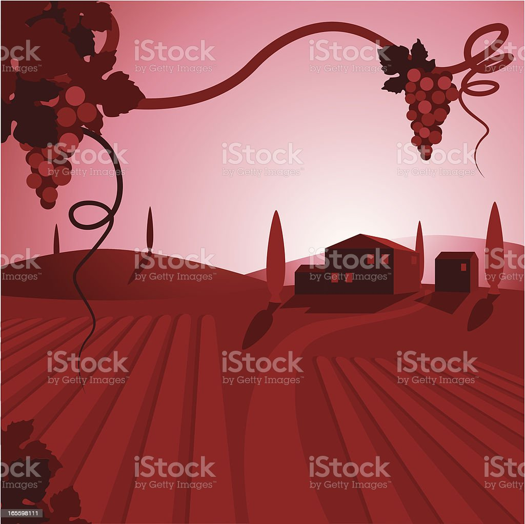 A cartoon depiction of a wine vineyard and houses vector art illustration