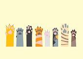 Cartoon Different Cat Paw Set. Vector