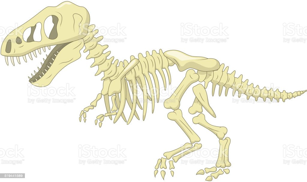 Cartoon Dinosaur skeleton vector art illustration