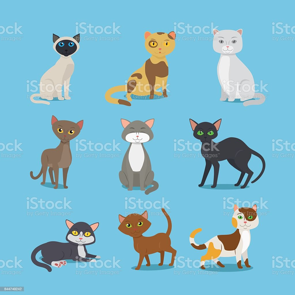 Cartoon domestic cat set vector art illustration