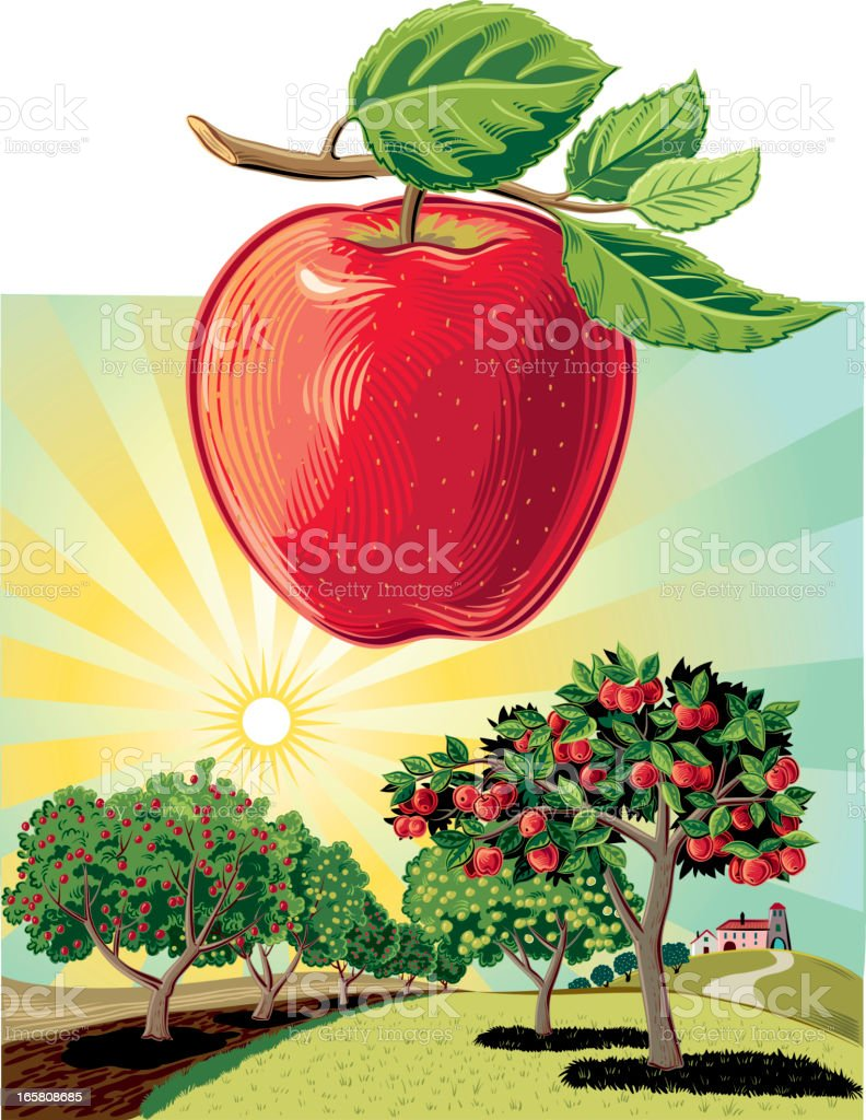 Cartoon drawing of apple trees vector art illustration
