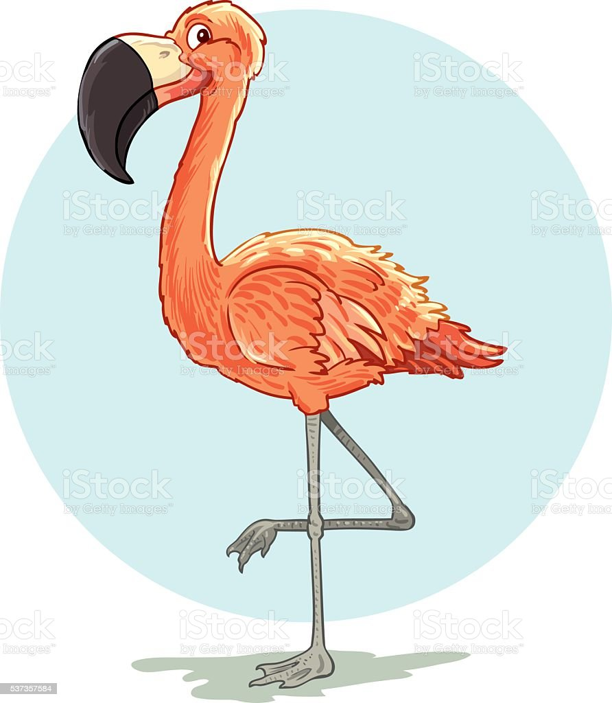 Cartoon flamingo bird vector art illustration