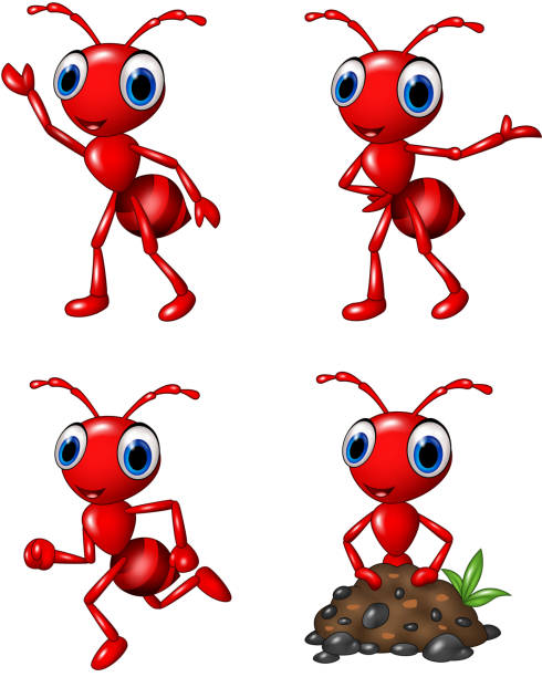 Ant Clip Art, Vector Images & Illustrations - iStock