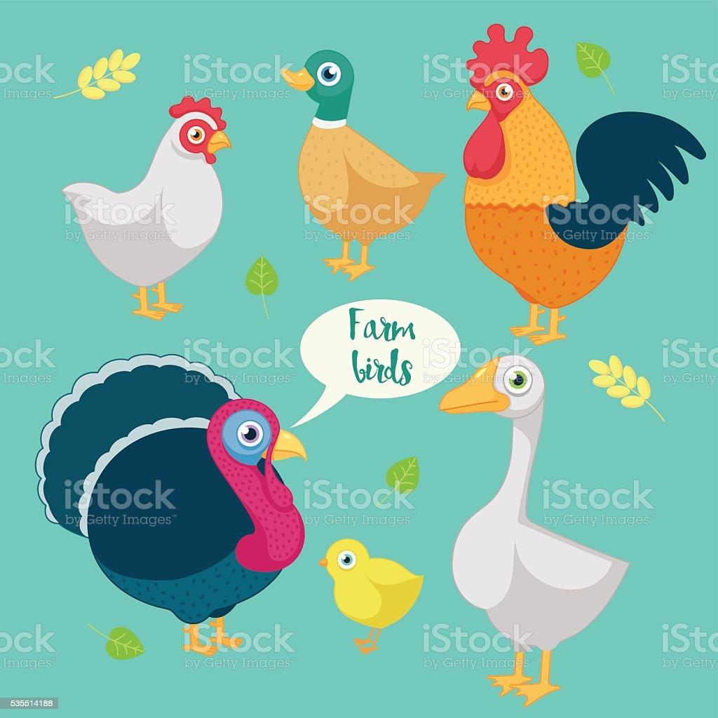 cartoon funny birds farm vector art illustration