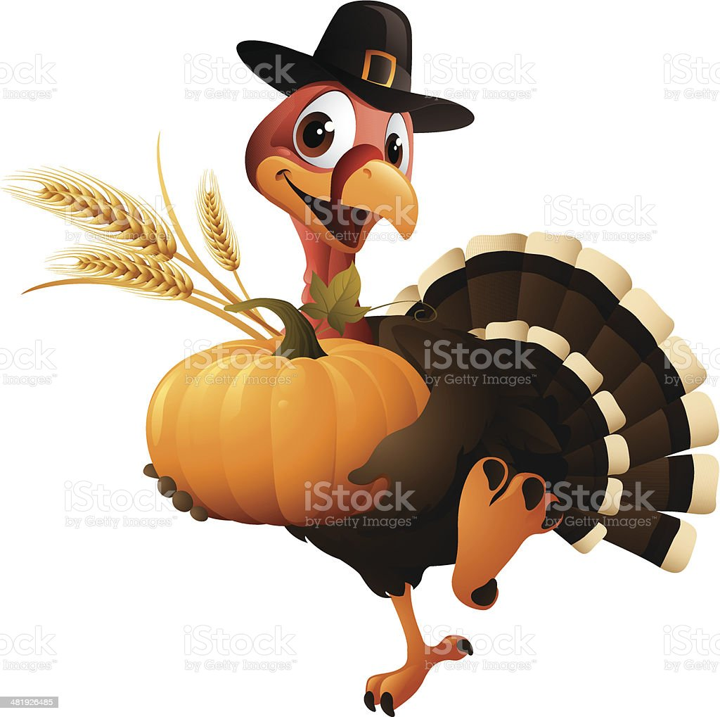 Cartoon graphics of pilgrim turkey holding pumpkin and wheat royalty-free stock vector art