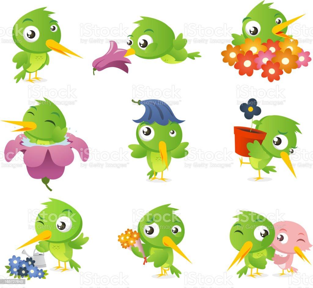 Cartoon hummingbird bird set collection vector art illustration