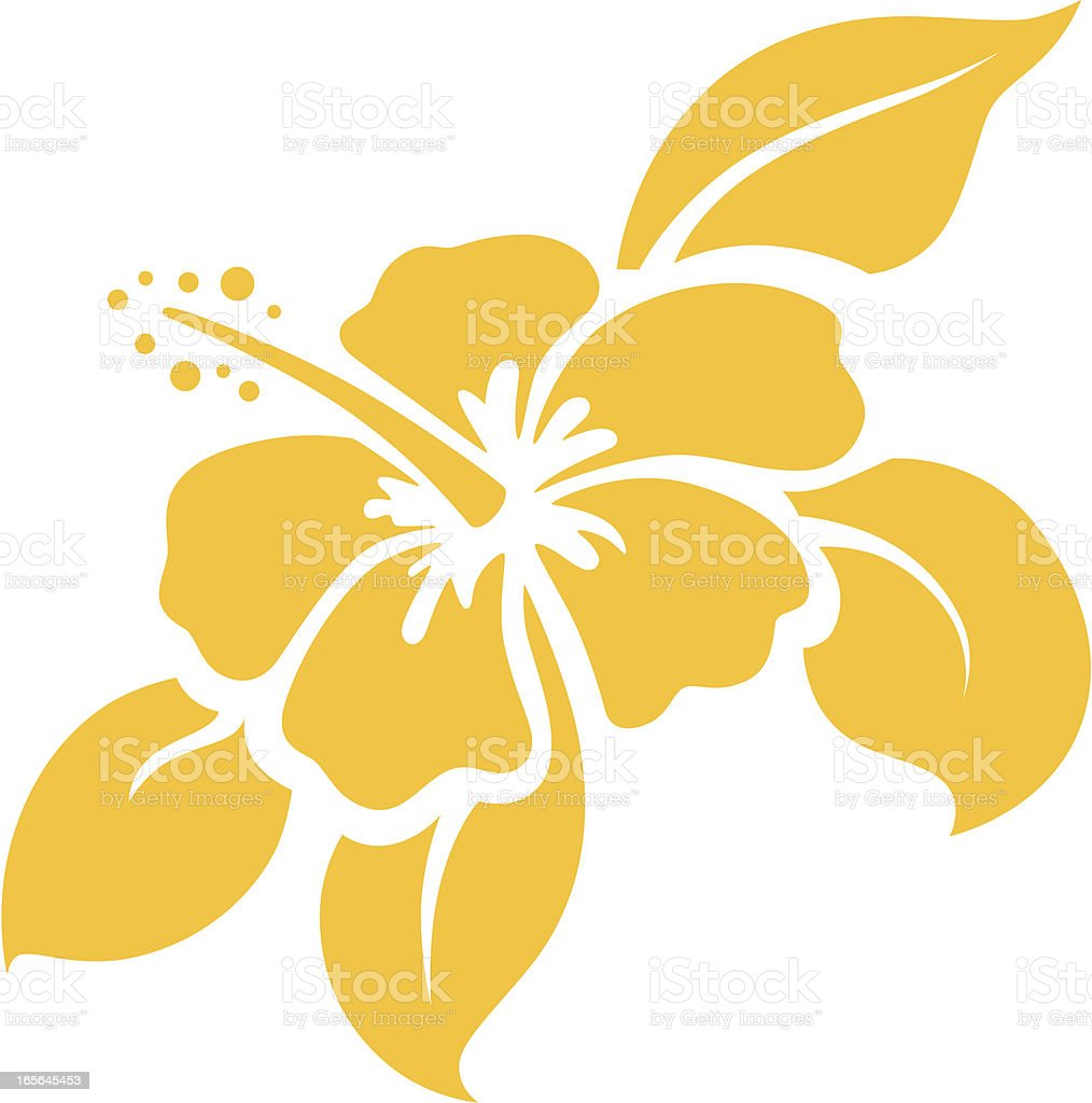 A cartoon illustration of a hibiscus flower on white vector vector art illustration
