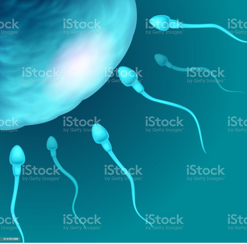 Cartoon illustration of sperms going to the ovule vector art illustration