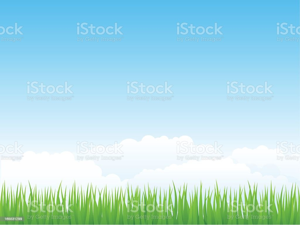 Cartoon image of blue skies and blades of grass  royalty-free stock vector art