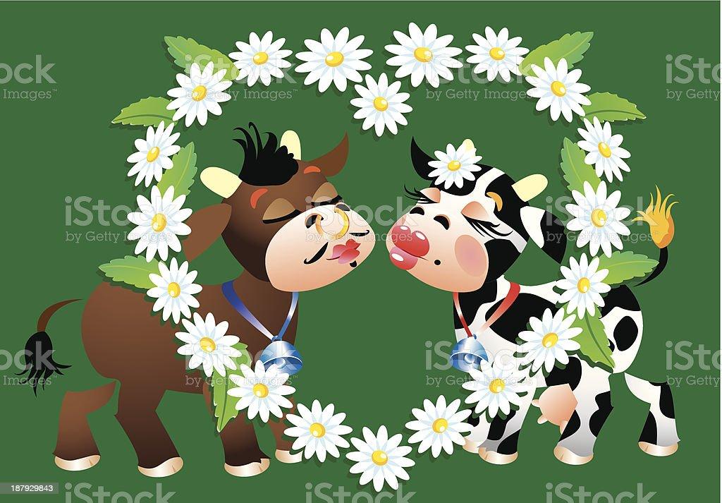 Cartoon kissing cows and daisies border royalty-free stock vector art