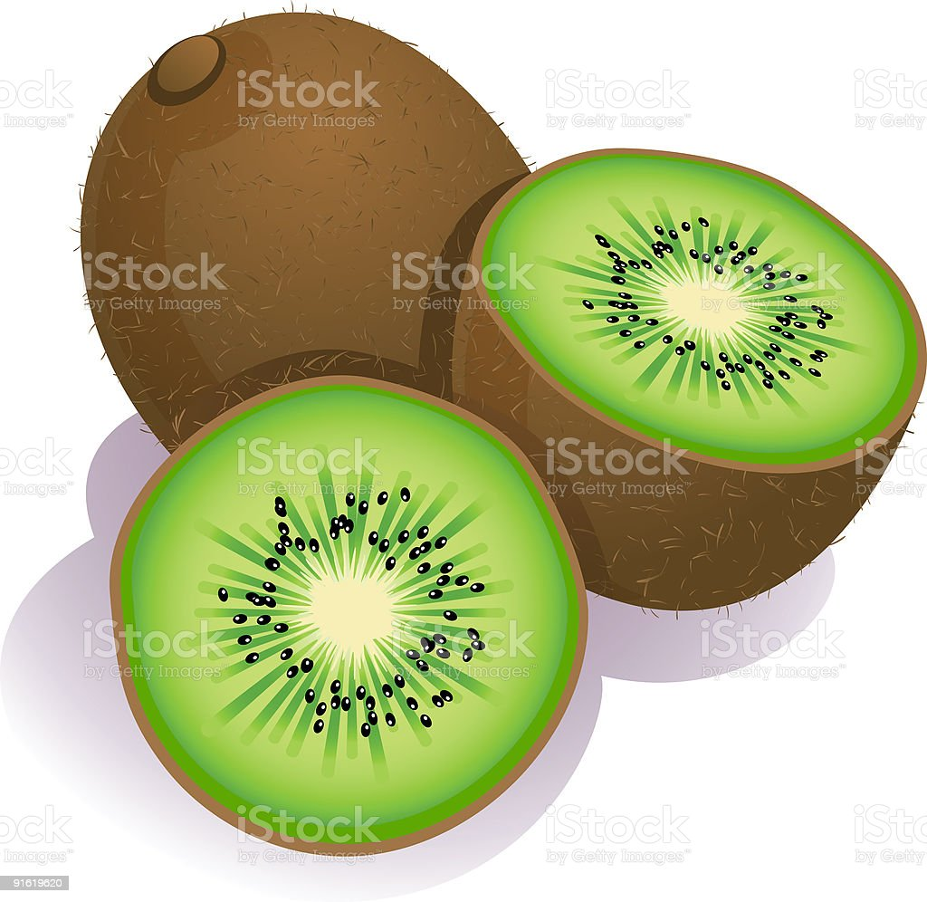 kiwi fruit clip art  vector images   illustrations istock clipart pineapple jack o'lantern clipart pineapple jack o'lantern