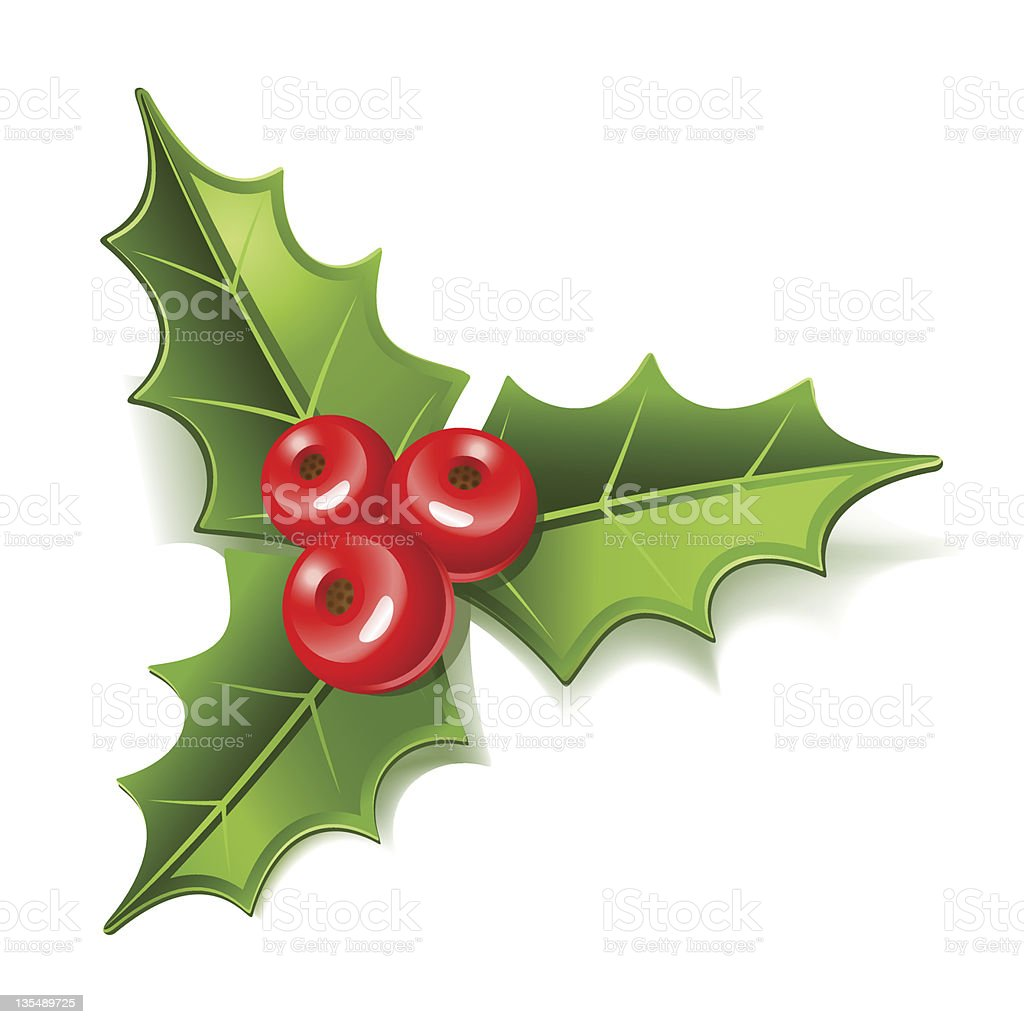 A cartoon of mistletoe with red berries vector art illustration