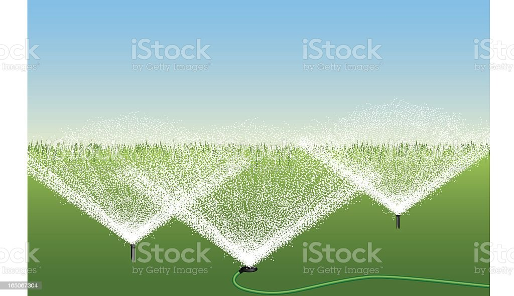 A cartoon of three sprinklers in a garden  royalty-free stock vector art