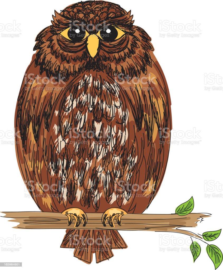Cartoon Owl On A Branch royalty-free stock vector art