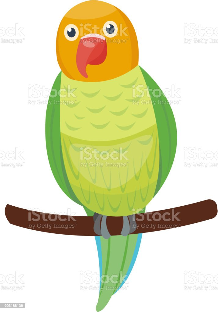 Cartoon parrot vector bird vector art illustration