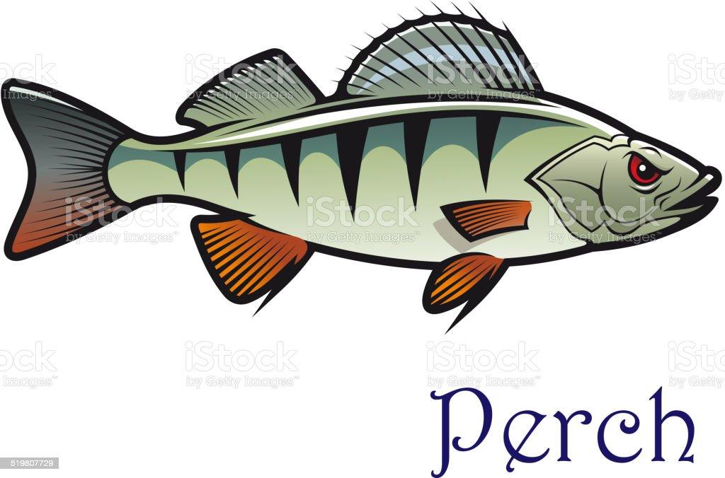 Cartoon perch vector art illustration