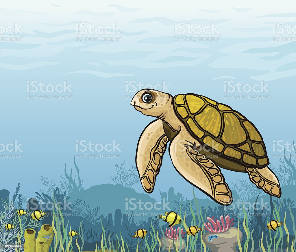 Cartoon sea turtle and coral reef. royalty-free stock vector art