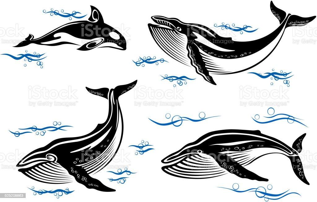 Cartoon sea whales vector art illustration