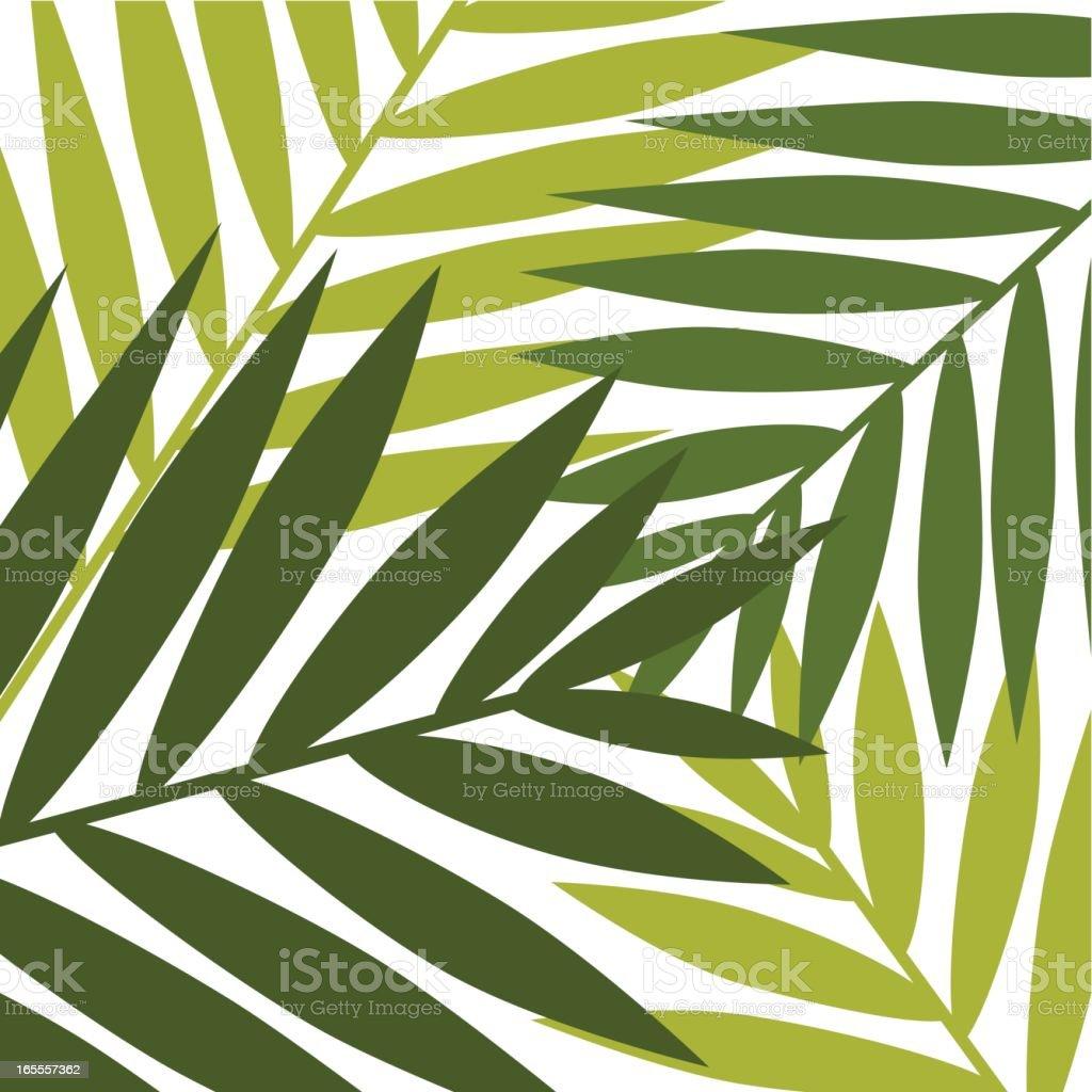 A cartoon template of jungle leaves vector art illustration
