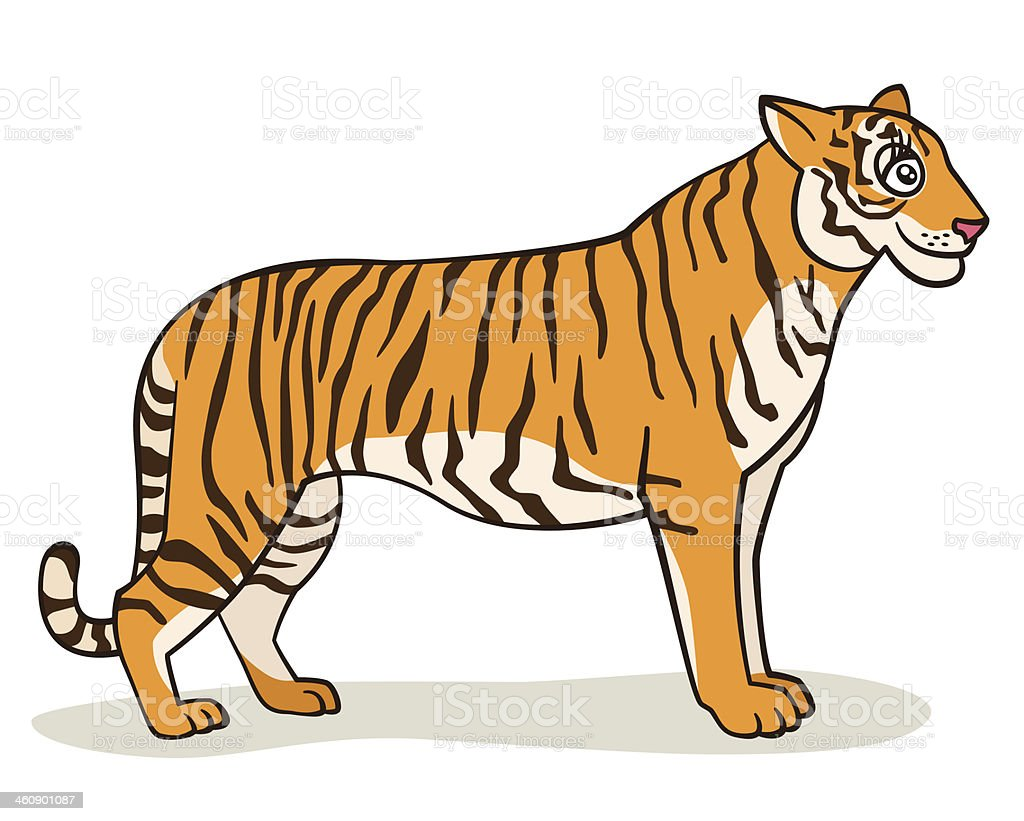 Cartoon Tiger royalty-free stock vector art