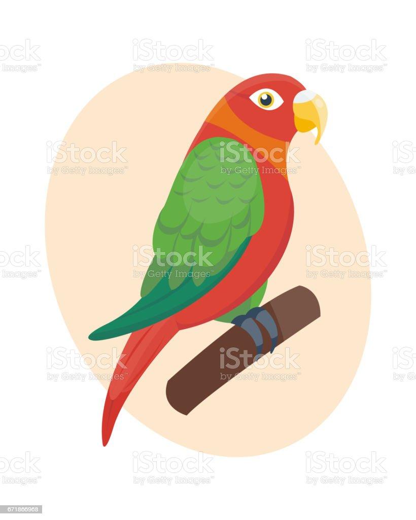 Cartoon tropical parrot wild animal bird vector illustration wildlife feather zoo color nature vivid vector art illustration