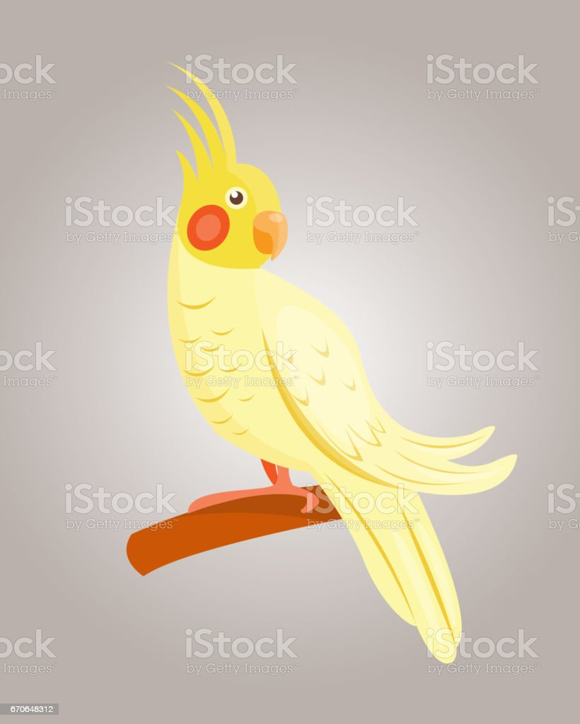 Cartoon tropical yellow parrot wild animal bird vector illustration...