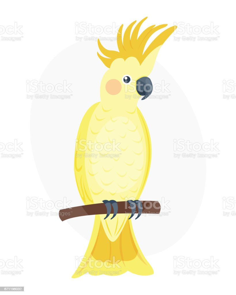 Cartoon tropical yellow parrot wild animal bird vector illustration...
