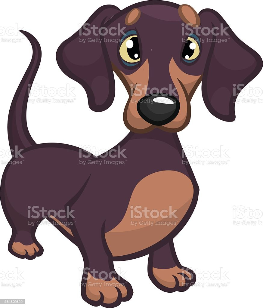 Cartoon Vector Illustration of Cute Purebred Dachshund Dog vector art illustration