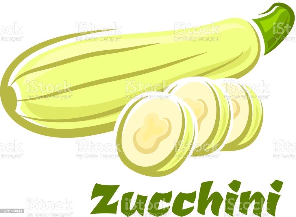 Cartoon whole and sliced fresh zucchini vegetable vector art illustration